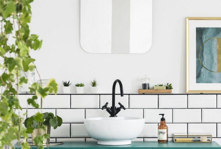 salle de bain avec plantes